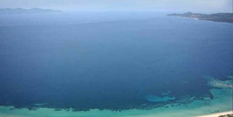 2 Beachfront Plots at Mount Athos Halkidiki