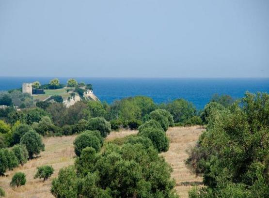 Вилла Греция праздники العطل فيلا اليونان 希腊度假别墅  greece villas 8