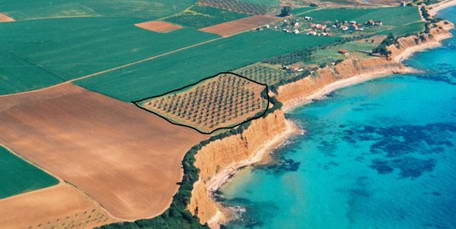 Land for Sale in Kassandra Greece, Halkidiki