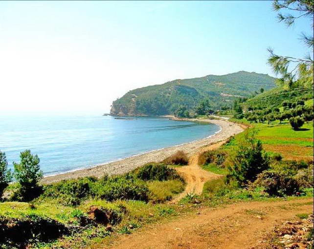 Villas By The Sea Halkidiki For Sale Greek Properties