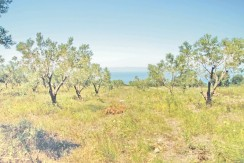 Land For Sale Halkidiki Greece 5