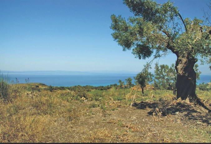 Land Polyhrono Halkidiki, 5200 m2