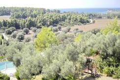 Suite Sani Halkidiki Greece For REnt 1616