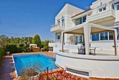 Seafront Villa LAgonisi 20