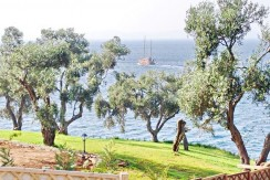 Villa Kassiopi Corfu Greece For Sale 21