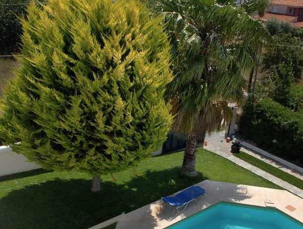villa For Sale Porto RAfti Attica Greece 5