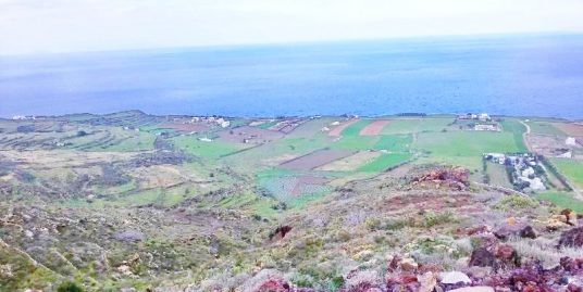 Land Finikia Oia Santorini