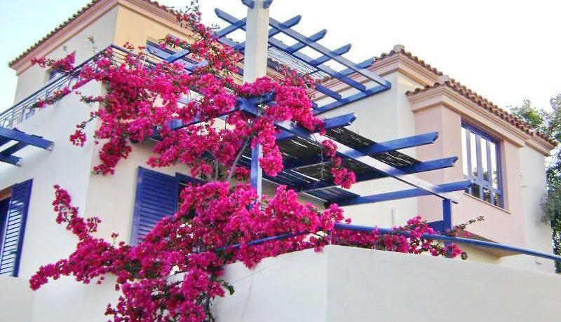 Skiathos Villa with Sea View 1