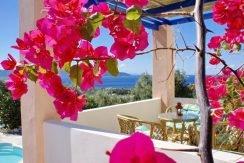 Skiathos Villa with Sea View 13