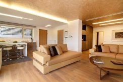 luxury villa in Athens for Sale 4