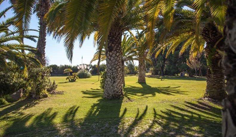 sea front Villa Halkidiki 8
