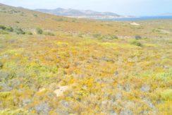 Antiparos land 2