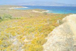 Antiparos land 4