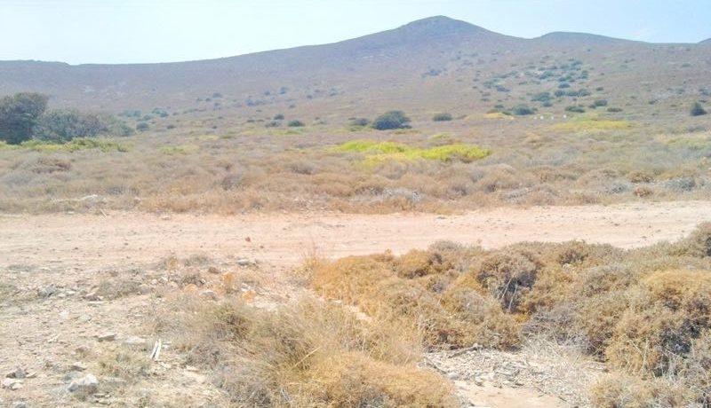 Antiparos land 6