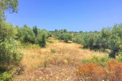 Seafront Land Nikiti Halkidiki Agios Ioannis 5