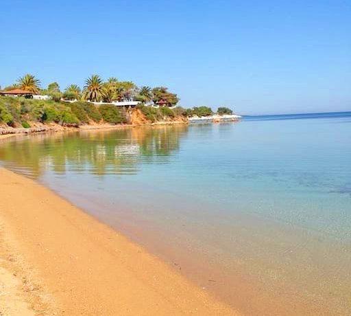 Seafront Villa Nikiti Halkidiki 7