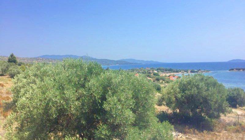 hotel for sale nikiti agios ioannis Sithonia Halkidiki 14