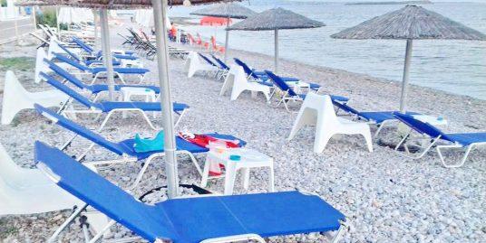 Restaurant Beach bar at Aegina, Amazing Price