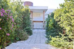 Villa in Anavyssos Attica 5