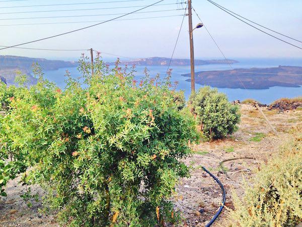 Built Hotel at Caldera Santorini 16