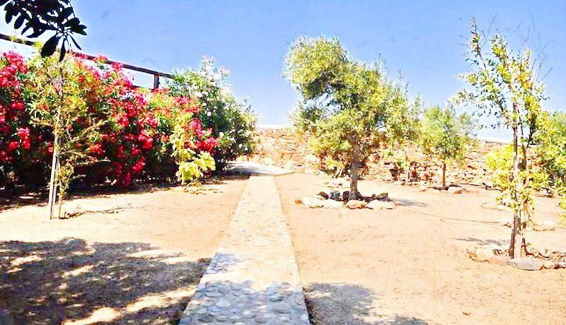 Villa Mykonos Ano Mera 6