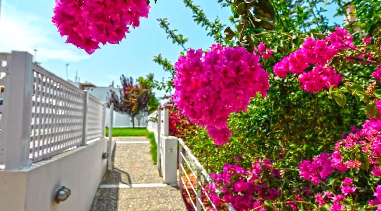 Villa of 5 Holiday apartments in Crete. Properties in Crete. Business in Crete 11