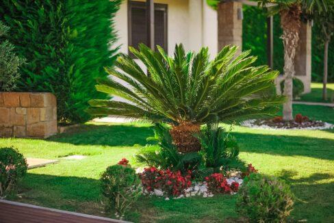 Villa at Elani Halkidiki, Halkidiki properties 11