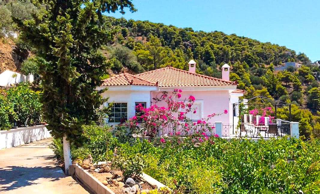 Seaview Villa poros Island, Near Athens, Greek Island Property for sale 22