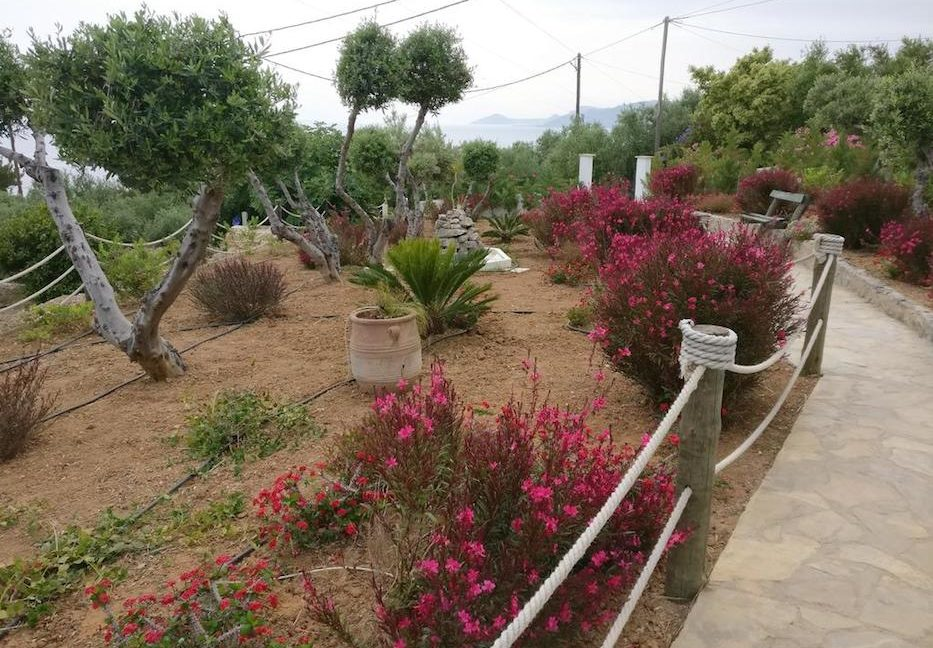 Property South Crete for sale 4