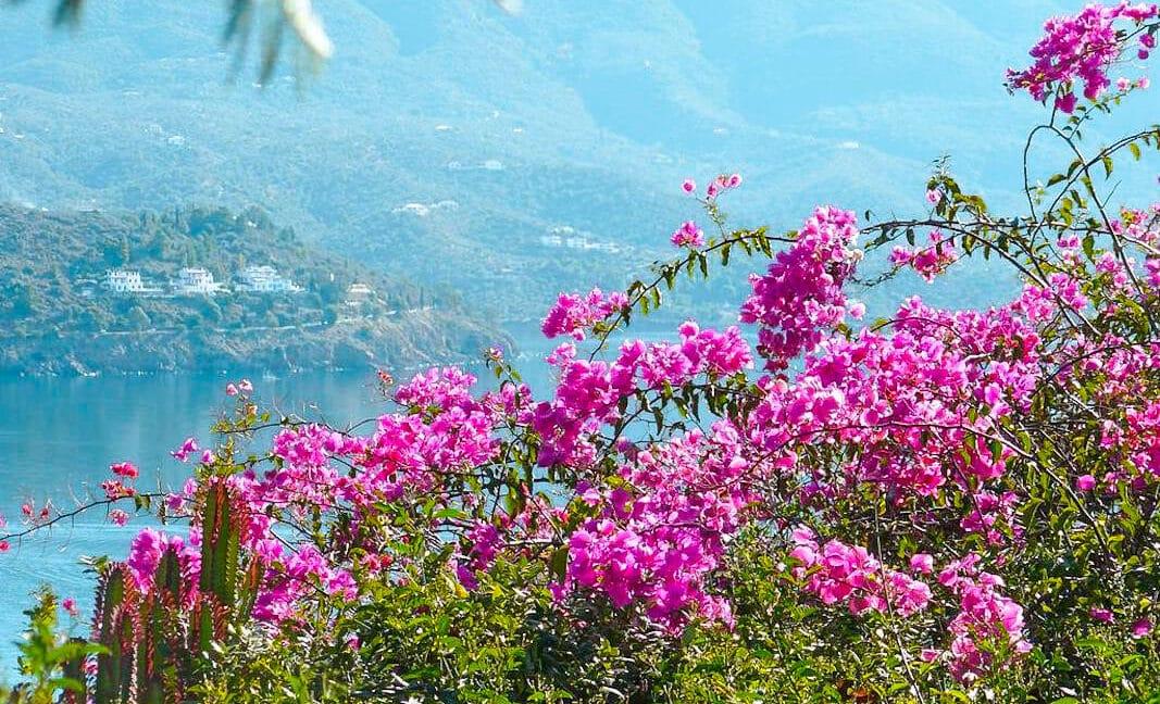 Seaview Villa poros Island, Near Athens, Greek Island Property for sale 18