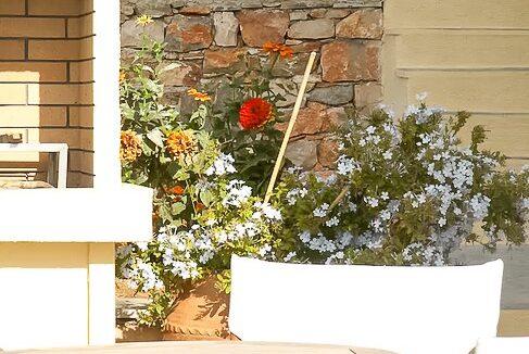 Villas for Sale in Alonissos Island, near Skiathos 6