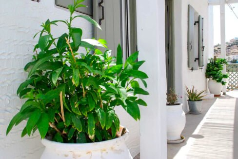 Detached house for sale in Syros of Cyclades Greece, Houses for Sale Cyclades Greece 24