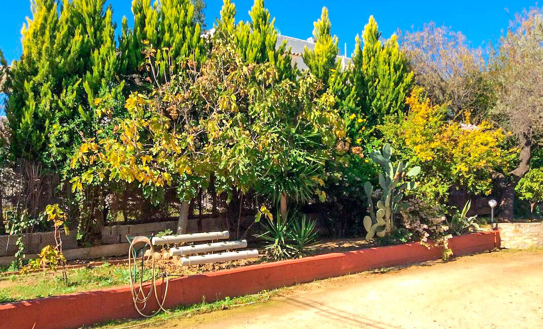 Seafront House in Evia Greece. Seafront Property in Euboea Greece 32