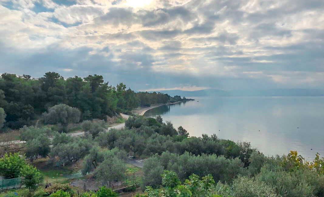 Seafront House in Evia Greece. Seafront Property in Euboea Greece 38