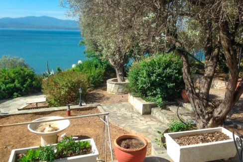 Seafront House in Evia Greece. Seafront Property in Euboea Greece 5