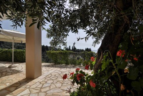 Villa by the sea in Paxos Island near Corfu, Ionian Islands Greece 7