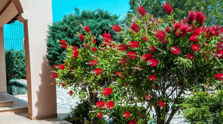 Villa with Pool and Sea View at Sounio Attica, Villas Sounio South Athens for sale 1