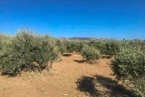 Seafront Land in Paros Greece to built, Land for Sale Cyclades Greece7