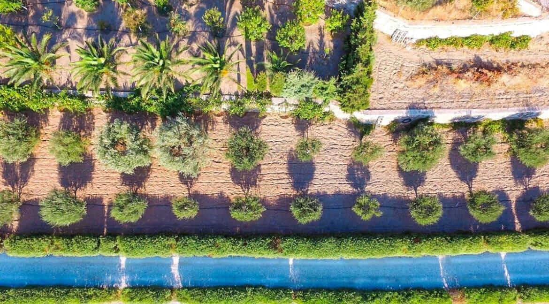 Beautiful Villa in Syros Island Cyclades Greece, Property in Cyclades Greece 26