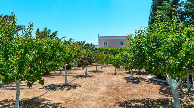 Beautiful Villa in Syros Island Cyclades Greece, Property in Cyclades Greece 34