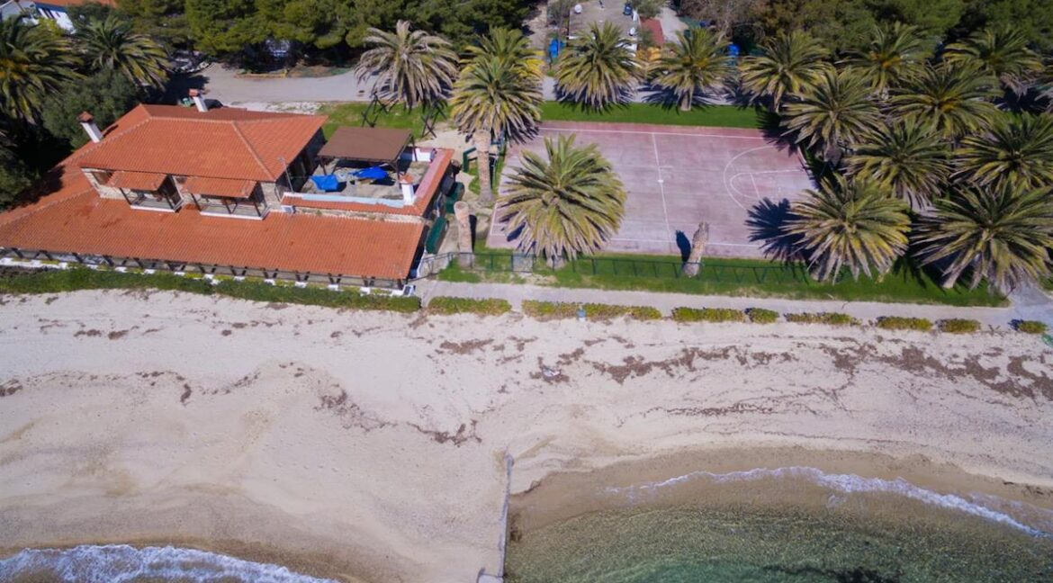 Seafront Land of 22 acres in Sithonia Halkidiki Ideal for Building a Hotel. Beachfront land Halkidiki Greece 15