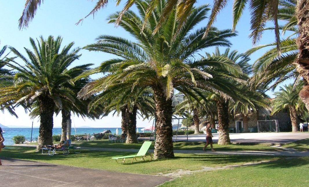Seafront Land of 22 acres in Sithonia Halkidiki Ideal for Building a Hotel. Beachfront land Halkidiki Greece 23