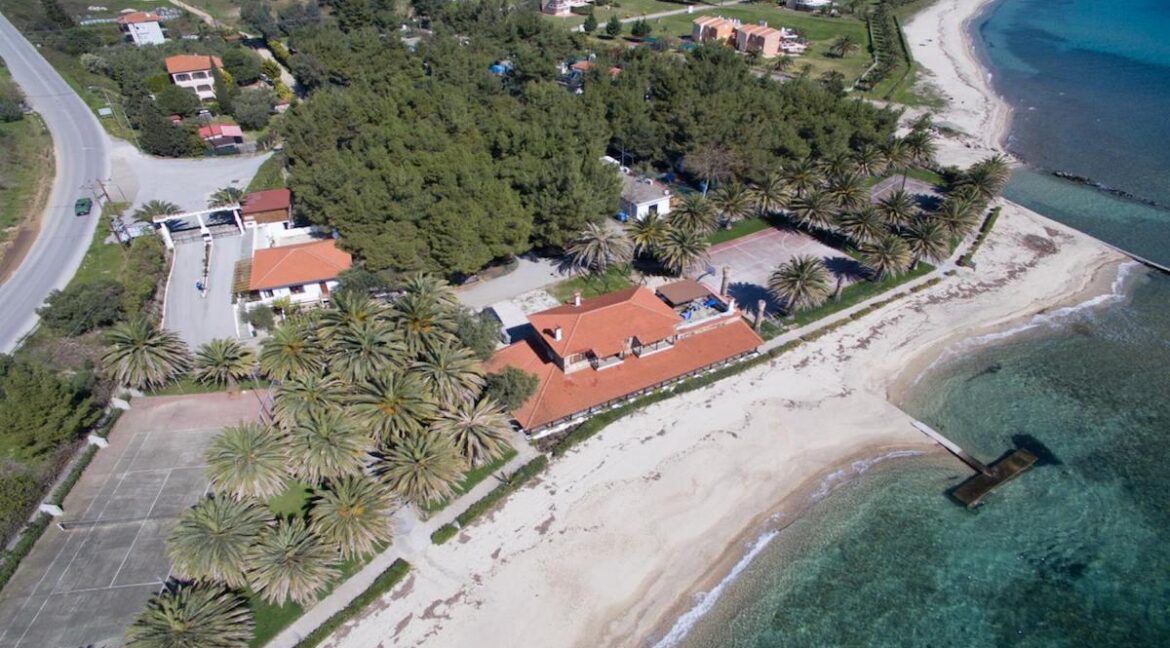Seafront Land of 22 acres in Sithonia Halkidiki Ideal for Building a Hotel. Beachfront land Halkidiki Greece 5