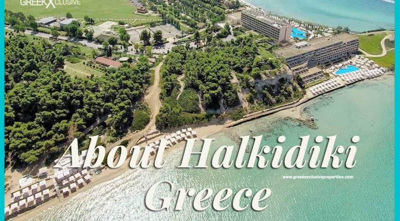 About Halkidiki, Halkidiki Properties