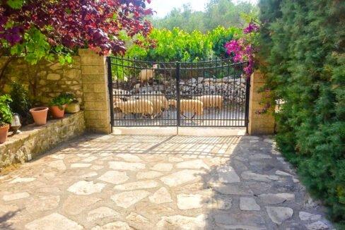 Property for sale in Rethymnon Crete, Properties Crete Greece 43