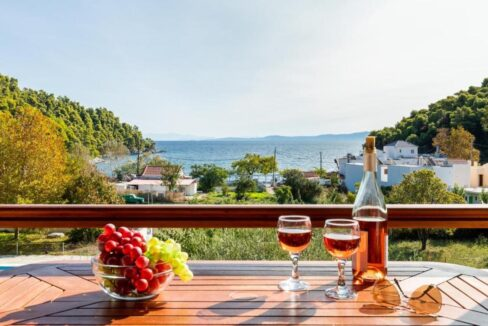 Apartments Hotel near the sea in Skopelos Greek Island , Skopelos Hotels for Sale, Greek Island hotel for Sale 2